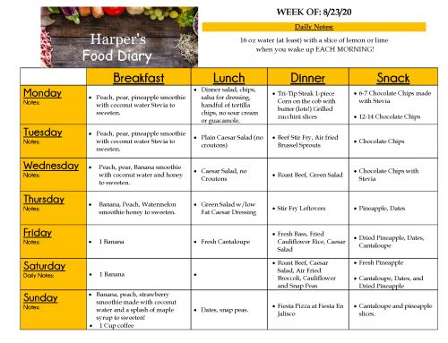 08-27-20 Food Diary